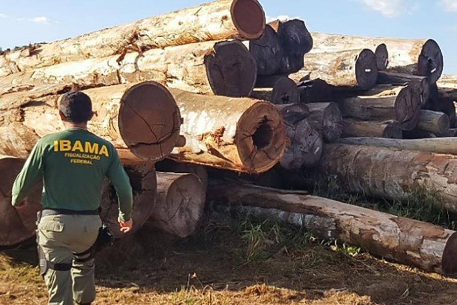 Governo autoriza concurso do Ibama com 568 vagas