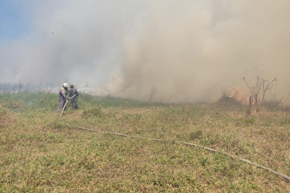 Bombeiros controlam incêndio em área rural de Guanambi