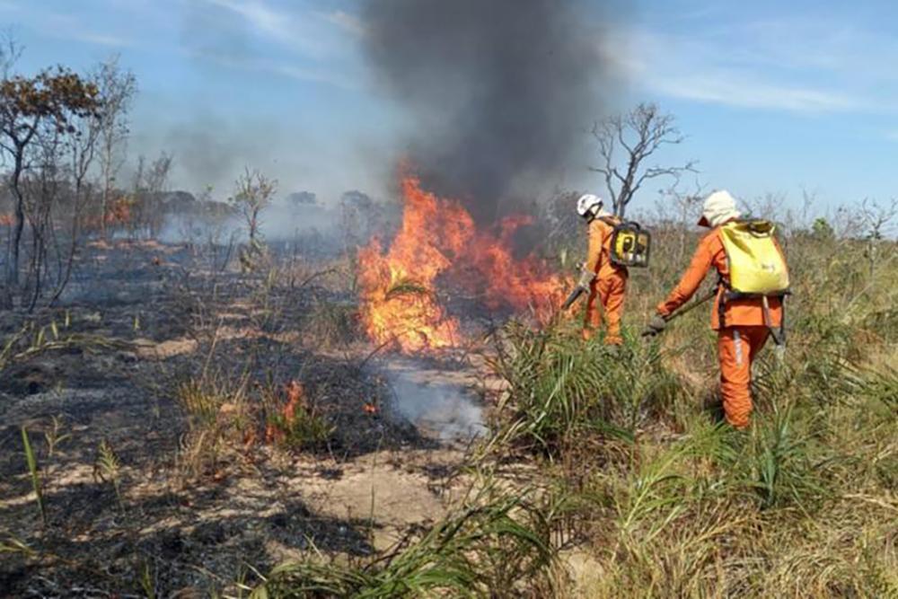 Incêndio atinge áreas de vegetação na Chapada Diamantina