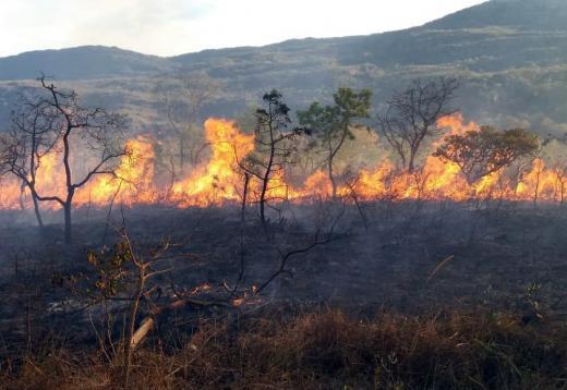 Incêndios atingem cinco cidades do interior da Bahia; Rio de Contas é a mais crítica, diz Bombeiros