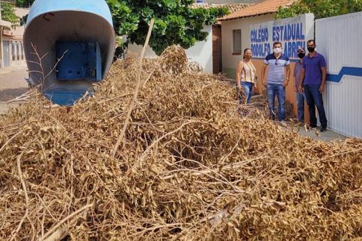 Jussiape: Vereadores denunciam lixo verde acumulado em frente a colégio em Caraguataí