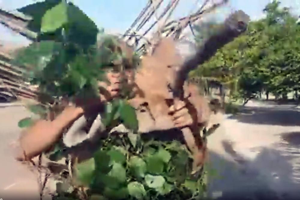 Segurando um tronco,  pastor Sargento Isidório diz que vai caçar Lázaro Barbosa