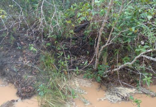 Rio de Contas: Crânio humano é encontrado em nascente do Poço Azul